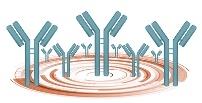 Solutions to immunoassay interference, cross reactivity and other challenges